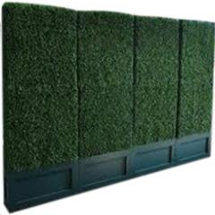 Rental store for BOXWOOD HEDGE 4 X7 6 X12 in Portland OR